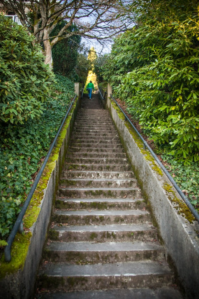 There are staircases like this one hidden in hilly neighborhoods throughout Portland. This one is in the Nob Hill area of NW Portland.